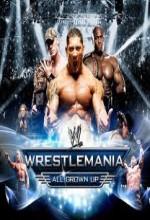Wrestlemania 23 (2007) afişi