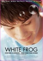 Beyaz Kurbağa