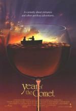 Year Of The Comet (1992) afişi