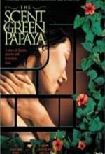 Yeşil Papaya'nın Kokusu