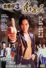 Young And Dangerous 3 (1996) afişi