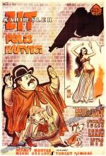 Zıt Kardeşler Polis Hafiyesi (1953) afişi