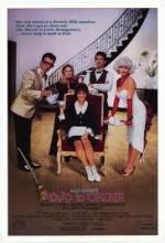 Zoraki Hizmetçi (1987) afişi