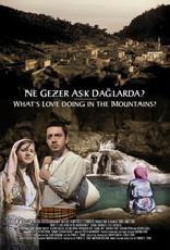 Ne Gezer Aşk Dağlarda?