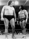 Andre The Giant profil resmi