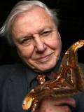 David Attenborough profil resmi