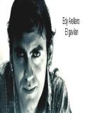Edy Arellano profil resmi
