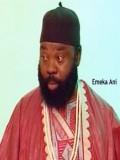 Emeka Ani
