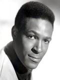 Marvin Gaye profil resmi