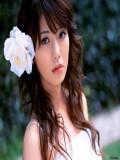 Yu Hasebe profil resmi