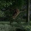 The Hive Resimleri