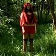 Kırmızı Başlıklı Kız (ıı) Resimleri