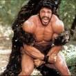Hercules' Resimleri