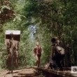 The Walking Dead Sezon 5 Resimleri