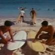 Aloha Summer Resimleri