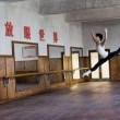 Mao'nun Son Dansçısı Resimleri