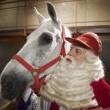 Sinterklaasjournaal De Meezingmoevie Resimleri