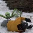 Buz Örümcekler Resimleri