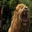 Narnia Günlükleri: Prens Kaspiyan Resimleri