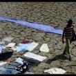 Bombay Summer Resimleri